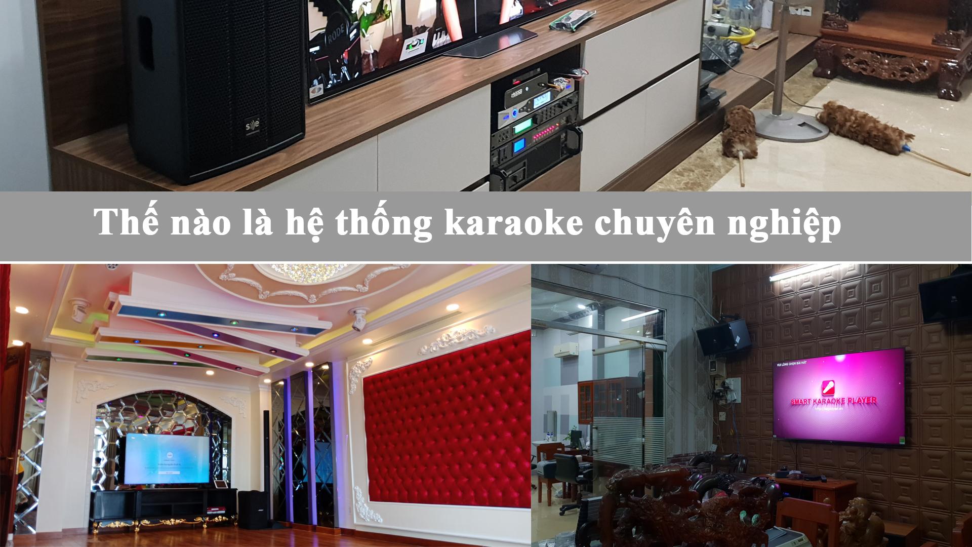 thế nào gọi là bộ dàn karaoke chuyên nghiệp